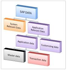 Sap Material Master Tables by Interview Question Difference Between Master Data And