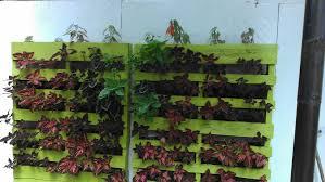vertical wall planter 5 steps