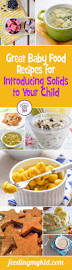 best 25 7 months baby food ideas on pinterest baby first foods