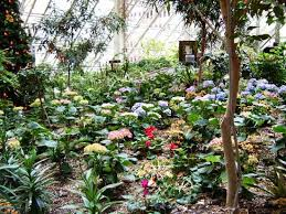 Botanical Gardens Calgary Devonian Gardens Calgary 2018 All You Need To Before You