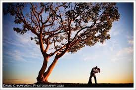 wedding photography san diego and engagement balboa park and downtown david