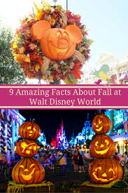 9 amazing facts about fall at walt disney world carrie on travel