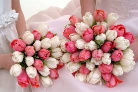Bulk Wedding Flowers Buy Bulk Wholesale Tulips Wedding Flowers Online Whole Blossoms