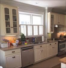 kitchen pantry ideas for small kitchens kitchen sink countertop