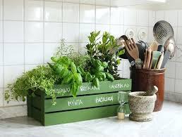plantes cuisine jardiniere interieur moderne jardiniare plantes cuisine interieur