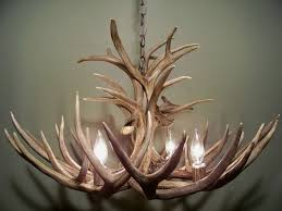 How To Build Antler Chandelier Best 25 Deer Antler Chandelier Ideas On Pinterest Antler