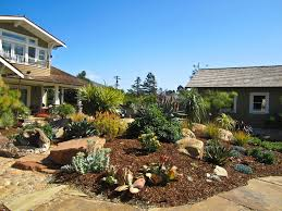 arizona backyard landscaping ideas mystical designs and tags