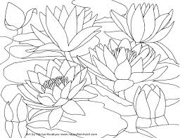 outdoor coloring pages at best all coloring pages tips