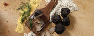 where can you buy truffles buy truffle fresh australian truffle truffle traders shop