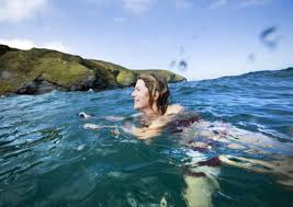 New Hampshire wild swimming images Wild swimming in hampshire 3 top spots things to do in jpg