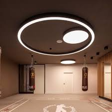 Ceiling Mounted Lights Surface Mounted Light Fixture Led Round Plastic Glorious