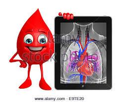 Cartoon Human Anatomy Cartoon Character Of Blood Drop With Heart Stock Photo Royalty