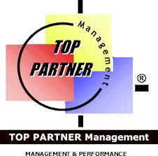 si e t ision top partner management conseil en management si et performance