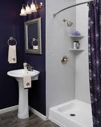 bathroom upgrades ideas home design ideas