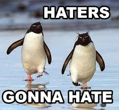 Funny Penguin Memes - funny memes 2014 08 funny penguin memes 20 pics haters gonna hate