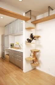 cat wall furniture cat tree furniture foter
