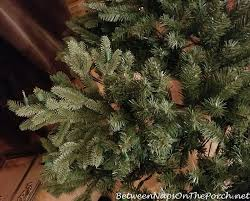 balsam fir christmas tree so disappointed with my balsam hill fraser fir
