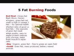 the diet solution program video part 2 best foods for diet
