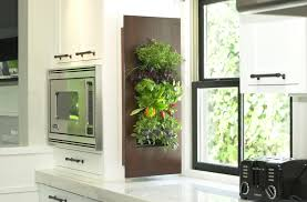 Indoor Garden Wall by Edible Walls Tropical Gardens In A Box