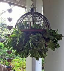Garden Sphere Balls Cute Hanging Succulent Plant Ball For The Outdoor Garden Patio