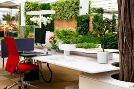 Small Plants For Office Desk by Articles With Office Decor Tag Office Desk Black Pictures Cheap