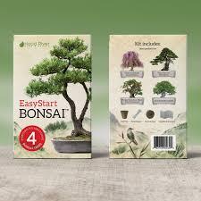 amazon com easystart bonsai kit everything needed to grow 4