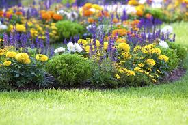 looking to fix up your front yard check out these easy
