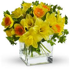 flower of the month discover the meaning of birth month flowers teleflora