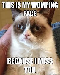 I Miss U Meme - miss you meme my day