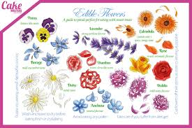 edible flowers edible flowers cake masters magazine