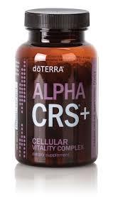 product details essential oil success