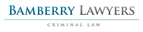 writing a character reference for court bamberry lawyers