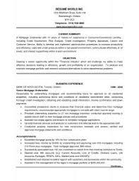 excellent resume format sample best 25 best resume format ideas