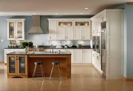where to buy kitchen cabinets online kitchen view kitchen cabinets online order home design image