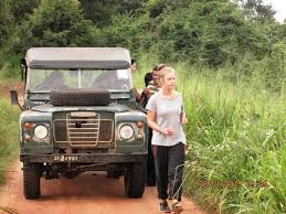 land rover jungle elephant diary the elephants are in excellent hands thank you