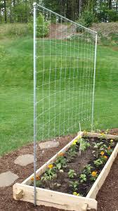vertical vegetable garden trellis home garden inspiration
