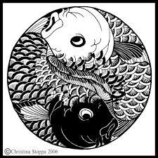 koi yin yang by qiu on deviantart