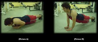 Bench Press Ups Arabian Muscles