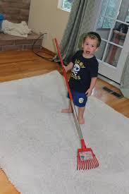 Rug Rakes Diy Cleaning That Shag Rug U2013 Inane Musings