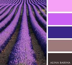 995 best paint chips images on pinterest colors color palettes