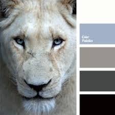 beige color palettes decor color solution colors