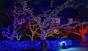 zoo lights at hogle zoo zoo lights houston 2014 365 houston