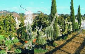 Outdoor Topiary Trees Wholesale - wholesale animal topiaries topiary frames u0026 shapes sk topiary