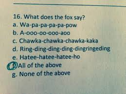 What Does The Fox Say Meme - what does the fox say test question snicker pinterest foxes