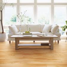 lauzon special birch solid 3 1 4 in by lauzon wood floors