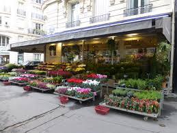 flower store flower shops fitaussiefamilies