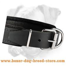 Comfortable Dog Collar Padded Leather Dog Collar With Thick Felt C24 C24 1013 Padded