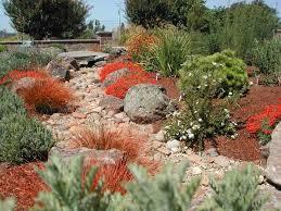 43 best xeriscap ing images on pinterest garden ideas