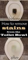 How To Remove Stains From Bathtub Best 25 Toilet Bowl Stains Ideas On Pinterest Remove Toilet
