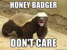 I Don T Care Meme - lol funny meme honey badger don t care